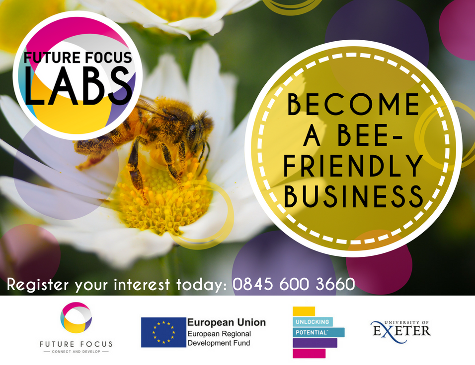 Become a Bee - Friendly Business