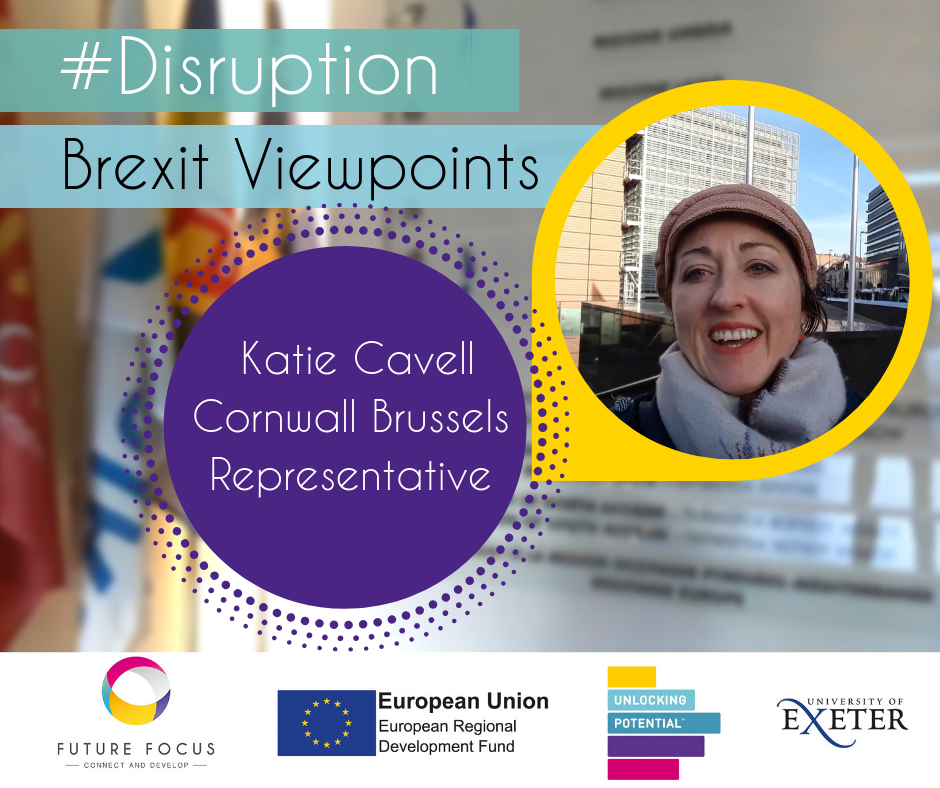 Brexit Viewpoints Katie Cavell