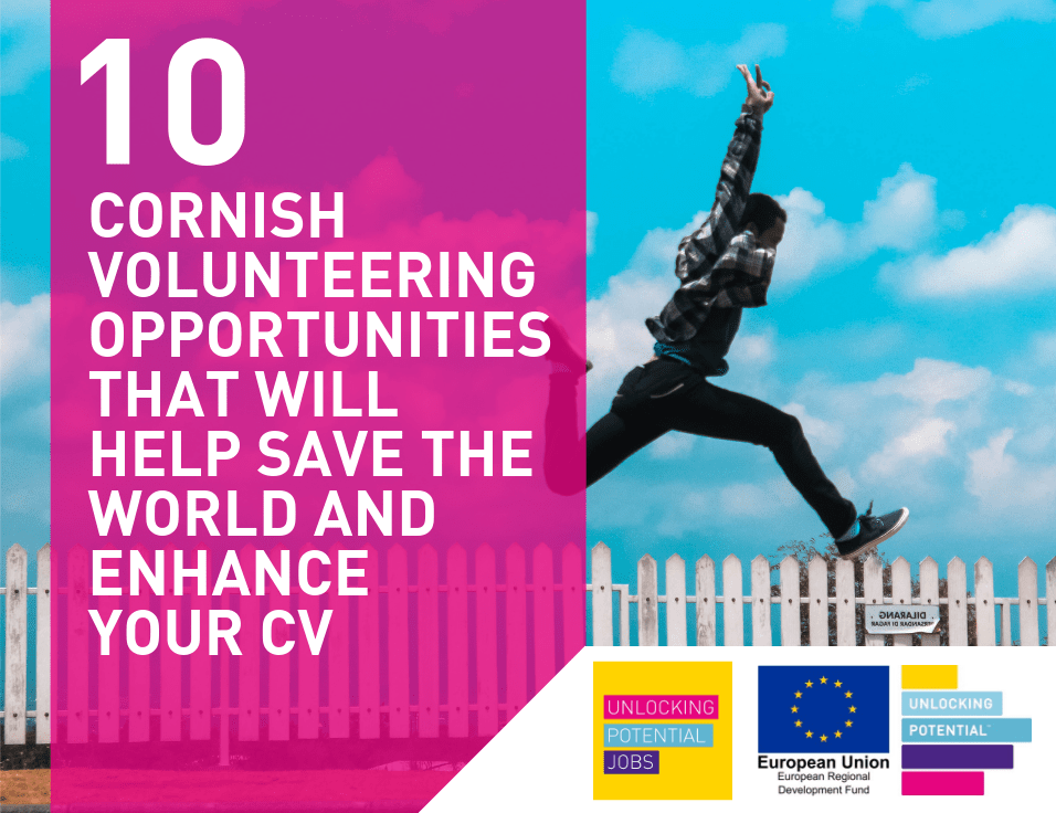 10 Cornish volunteering opportunities that will help save the world and enhance your CV
