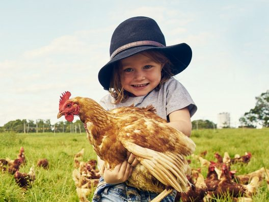 Smiling girl wearing big navy blue hat holding brown chicken with fields and chickens in the background