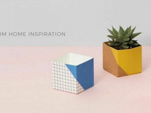 Three block pots, one with house plant, in front of pastel background